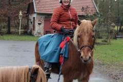 Dk-und-Pferde